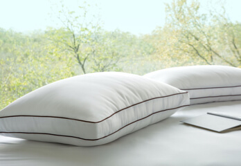 Saatva Latex Pillow